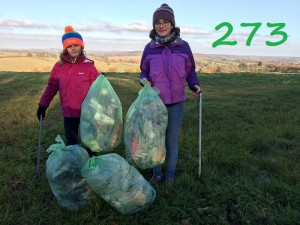 local-litter-pick-300x225