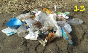 two-min-beach-clean-at-Fraisthorpe-5th-March-with-number-300x180